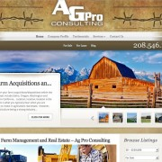 agproconsulting